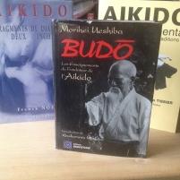 Budo la référence de chaque aikidoka par O'senseï