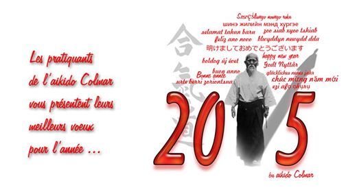 Bonne année 2015 avec l'aikido Colmar