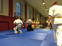 Leon Aikido Colmar Diables Rouges