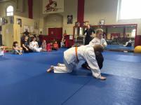 rentrée enfants aikido 2017 (4)
