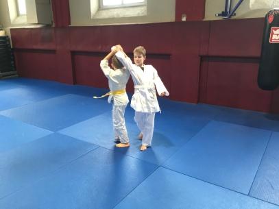 aikido Colmar Diables Rouges, les enfants rentrée 2018