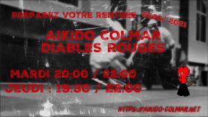 Aikido Colmar Diables Rouges